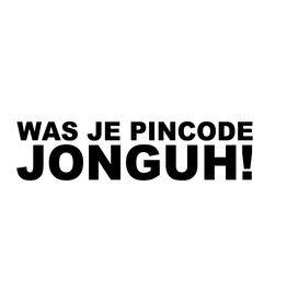 """Pegatina """"WAS JE PINCODE JONGUH!"""""""